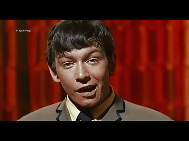 The Animals - Around Around (1964) HDwidescreen ♫♥50 YEARS counting