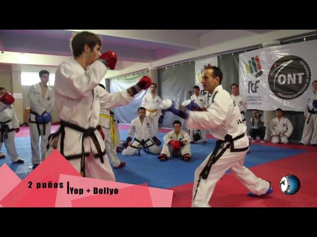 Gran Seminario Internacional ONT CHILE- Tomaz Barada - Técnicas - 2013 - Santiago - Chile