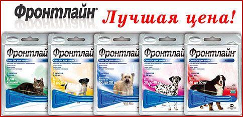 ПетСовет - интернет-зоомагазин, доставка заказов по всей России - Страница 2 ZJKS8HuU--4