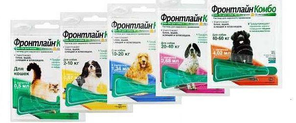 ПетСовет - интернет-зоомагазин, доставка заказов по всей России - Страница 2 Zx8BcUP8HDQ