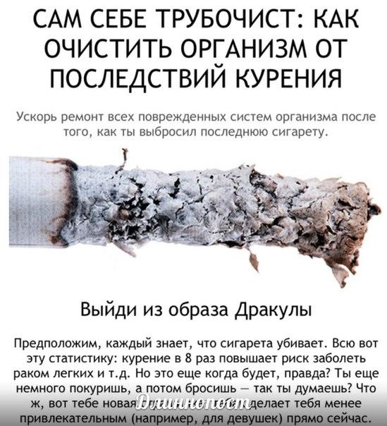 Очистить легкие после курения в домашних условиях 198