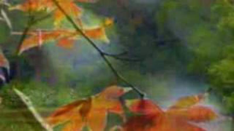 Цей листопад-ГуртГевки
