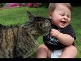 Смешные кошки и дети 2015 КОТЯТА Лучшие смешные приколы 2015 май TOP Epic Fail # 290