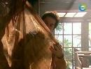 142  Лео платок Жади  (Клон)
