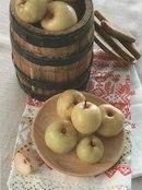 Фото рецепта: Как заквасить яблоки