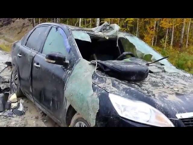 Медведь разорвал машину ХМАО Пыть Ях ДНС Майская