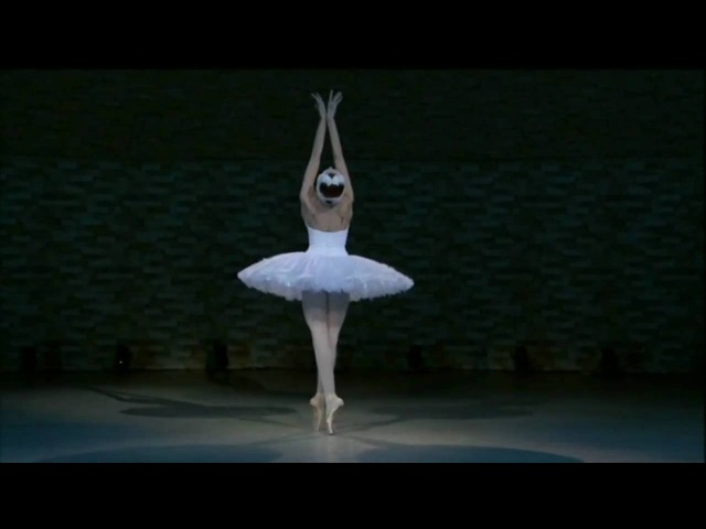 Uliana Lopatkina - Dying swan