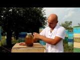 Огневка пчелиная. Восковая моль от производителя.