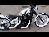 2002 Honda Shadow VLX 600 Custom (Lobos)