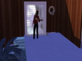 The sims 3 The doorbell