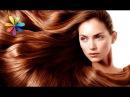 МОЙ ДЕБЮТ НА ТВ!!!!СТБ_канал))Как подобрать оттенок волос по цветотипу лица! – Все буде добре. Выпуск 676 от 24.09.15