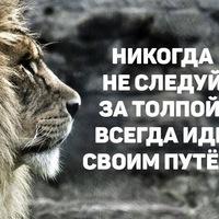 Анкета Евгения Покотило