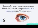 12 интересных фактов о глазах. Особенности и цвет глаз