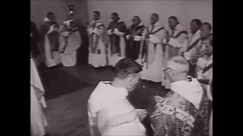 Мужчина и женщина. Часть 6. Война полов Десмонд Моррис BBC
