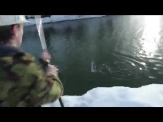 HFM (How Fast Make) - Как сходить на рыбалку видео выпуск Юмор прикол смешное видео супер круто я ржал смотреть до конца