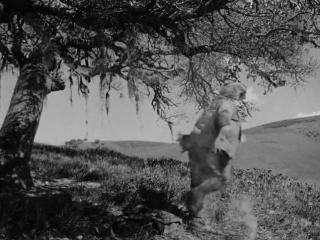 Боец из  Кентукки(The Fighting Kentuckian)(1949)