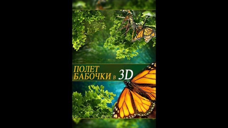 Полет бабочки 3D Flight of the Monarch Butterfly 3D 2012 смотреть онлайн в хорошем качестве HD