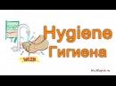 English cards - Hygiene / Английские карточки - Гигиена