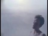 Ягода-морошка  Salmonberries (1991) - Barefoot - K.D. Lang