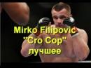 Мирко Филипович Крокоп, лучшие бои моменты и нокауты 2015
