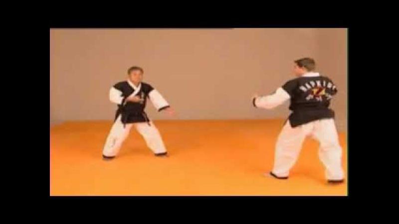 Hapkido Tecnica basica nº 1 impartida Por el Maestro Kwang Sik Myung