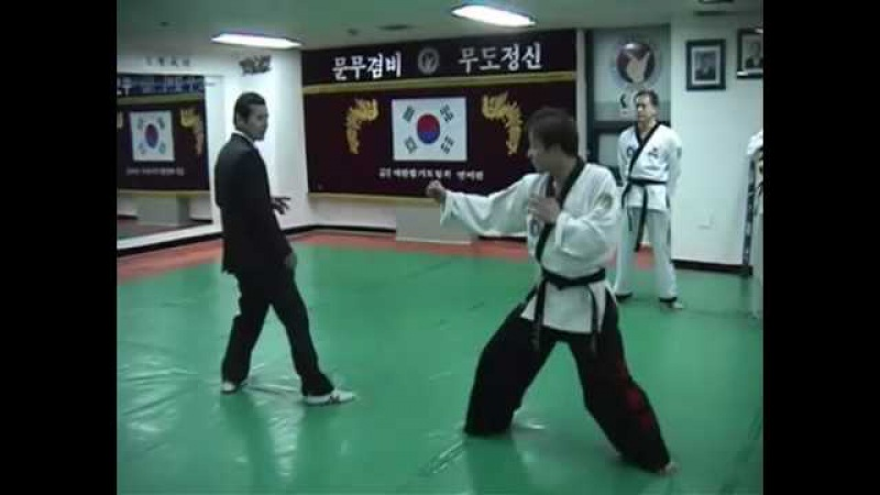 Hapkido Fighting Techniques