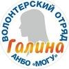 """Волонтерский отряд """"Галина"""""""