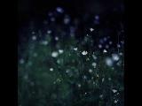 CALLmeKAT - Flower In The Night
