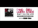 David Guetta Feat. Emeli Sande - What I Did For Love (Quentin Mosimann Remix)