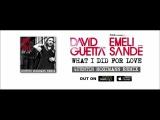 David Guetta Feat. Emeli Sande - What I Did For Love (Quentin Mosimann Remix)