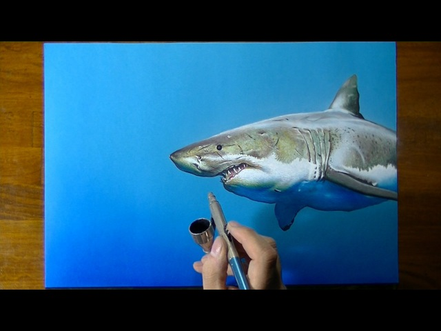 Акула 3D Art