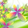 Flowers-Ukraine
