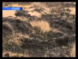 С харьковских полей вывозят чернозем за границу