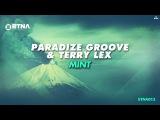 Paradize Groove &amp Terry Lex - Mint (Original Mix)