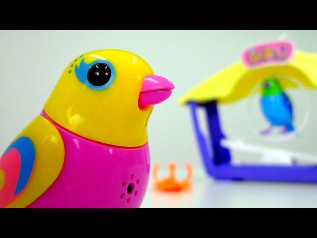 Игрушки для детей интерактивные поющие птички DigiBirds
