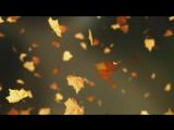 Falling Autumn Leaves Background loop