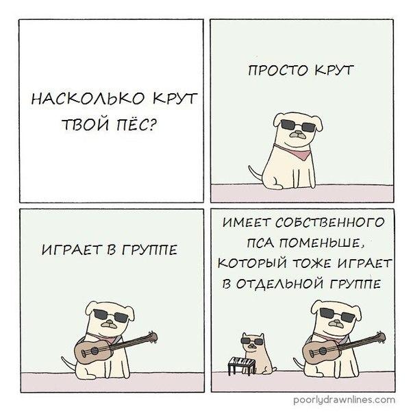 https://pp.vk.me/c622327/v622327430/4a954/gr7YGJYVaLc.jpg
