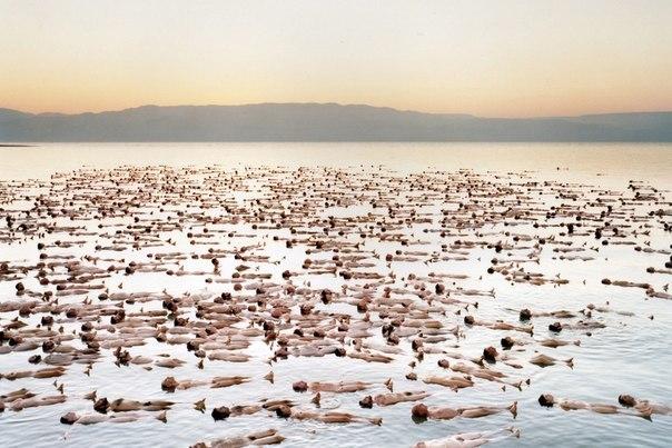 Подводное плавание в Мертвом море)