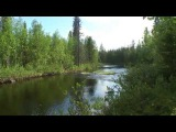 Жаркое лето 2011го - в тайгу на рыбалку