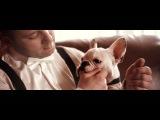 Sara &amp Andrey MOJO.BY Wedding video 2015 MINSK
