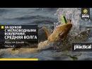 За щукой с мелководными воблерами Средняя Волга Часть 2 Anglers Practical