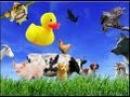 говорят животные 2