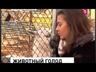 В Луганске спасают питомцев местного зоопарка Новости Луганск Сегодня 24 12 2014 г