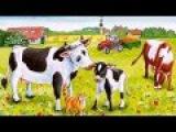 Весёлая корова .с весёлой детской песенкой.