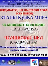 20.06.15 Выставка собак РОО НКЛ