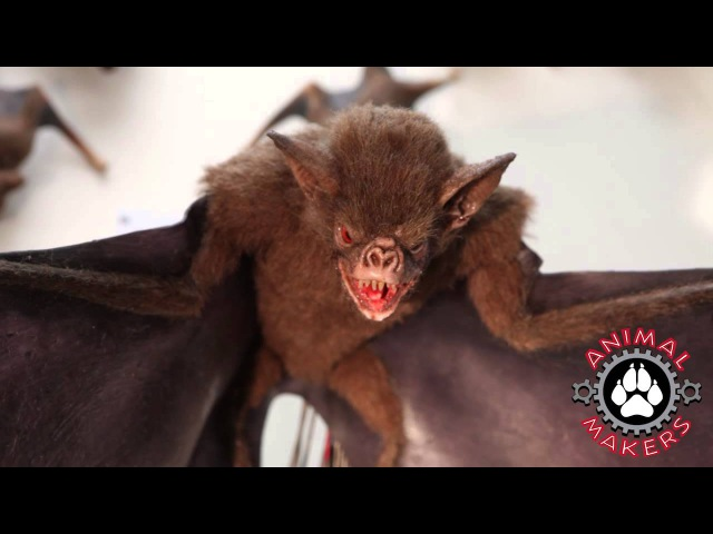 Animatronic Bat Available For Rental or Purchase