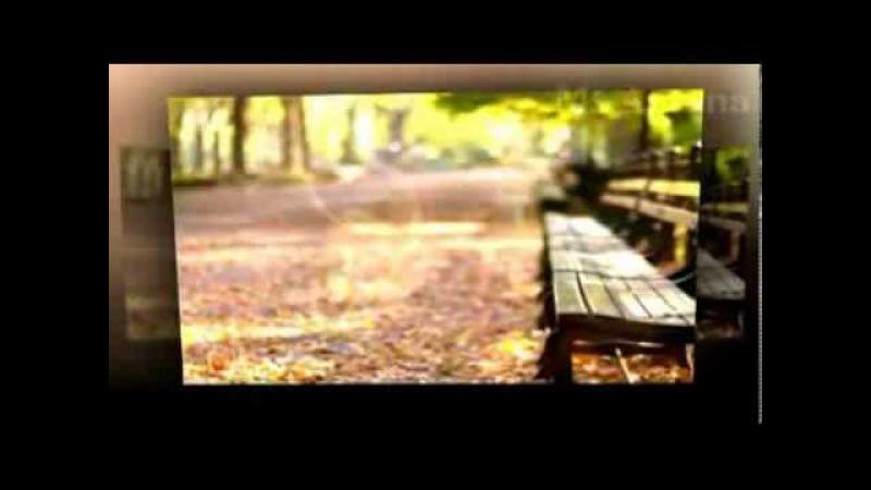 Ретро 70 е - Р. Паулс - Блюз дождя (клип)