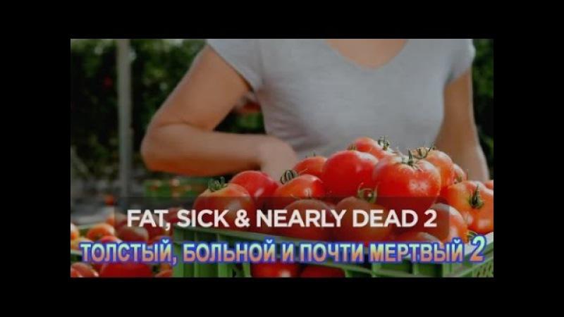 Толстый больной и почти мертвый 2