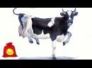 Танцующие коровы. Смешные коровы танцуют