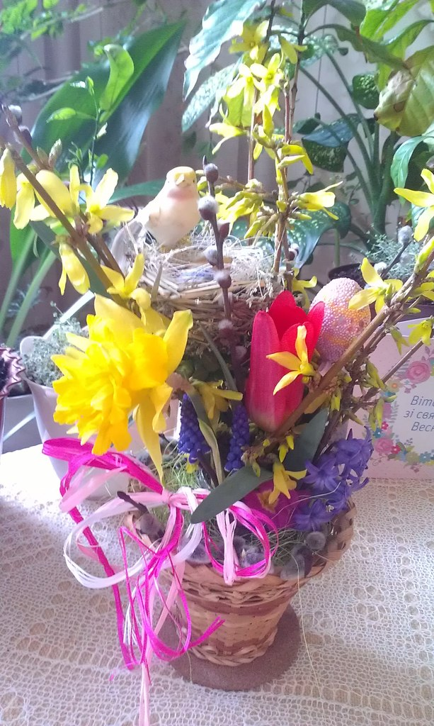 Весна... Пришел рассвет и миру улыбнулся... DpLjxVBJ1n8